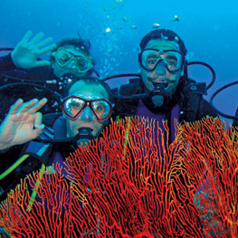 Scuba diving in Ouvea, New Caledonia