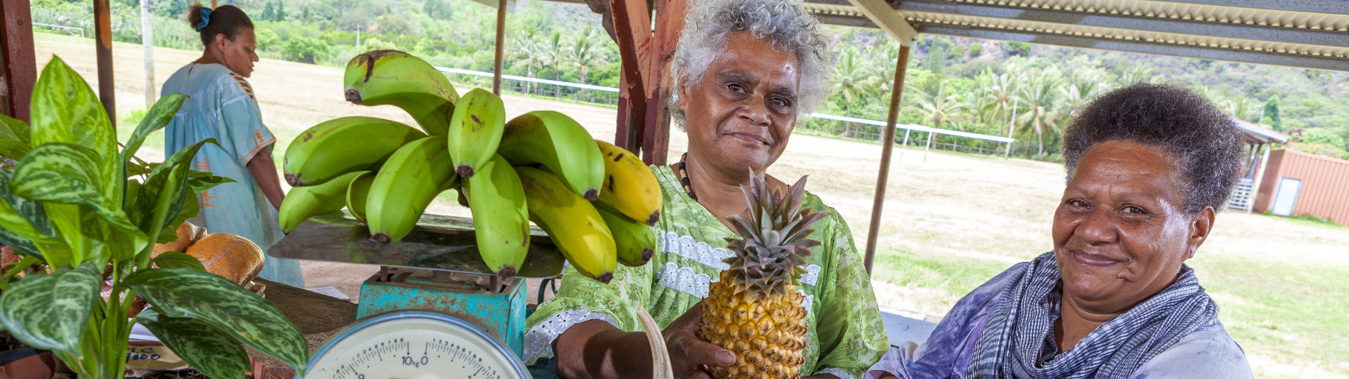 local products of new caledonia