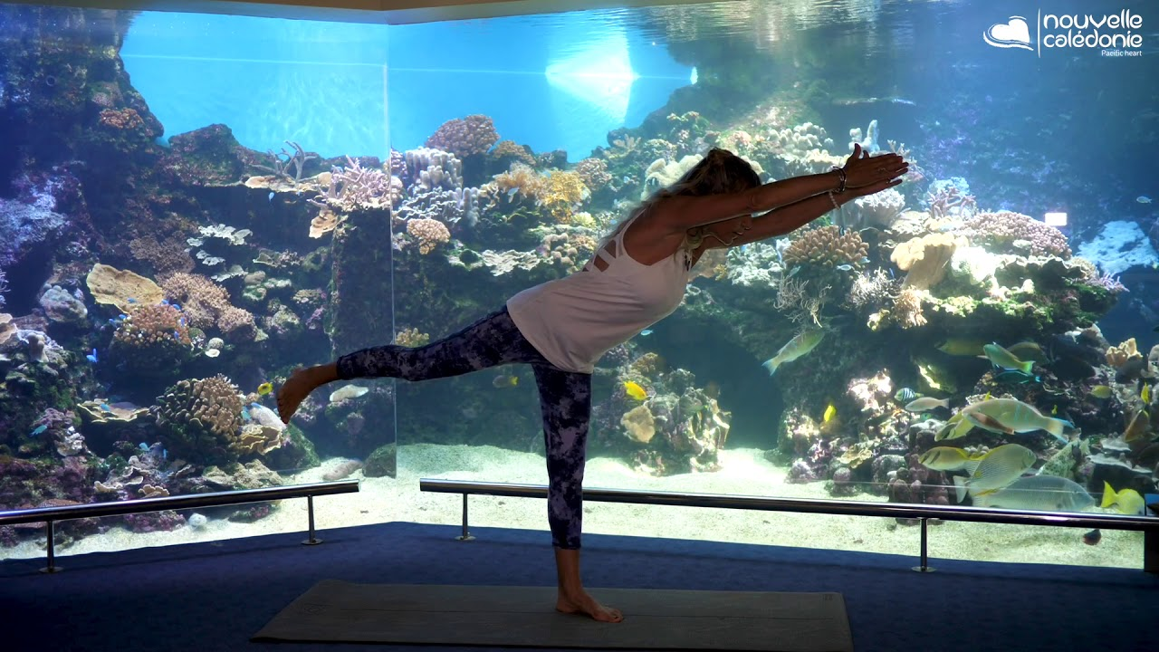 yoga at aquarium des lagons noumea